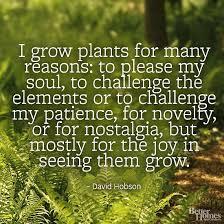 Garden Quotes Plants. QuotesGram via Relatably.com