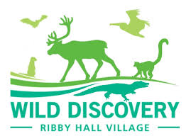 Wild Discovery | The Zoo That Interacts With You