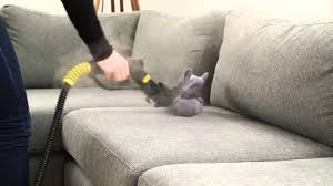 Furniture Steam Cleaning Dupray Tosca™ Steam Cleaner