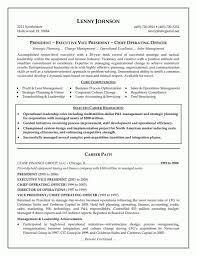Cio Resume Examples 2017 Amazing Cio Sample Resume Contemporary Entry Level Resume 22