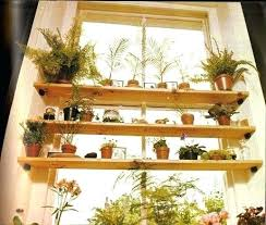 plant shelving plant shelves decorating ideas decorations delectable home decoration idea with cute mini plants in