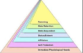 what are the disadvantages and advantages of the maslow hierarchy  maslow