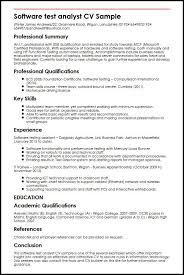 Performance Profile Resumes Software Test Analyst Cv Sample Myperfectcv