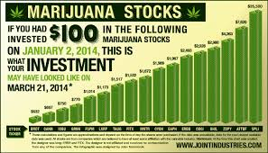 Image result for Marijuana Penny Stocks