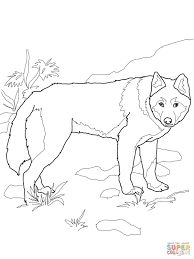 Small Picture African Wild Dog coloring page Free Printable Coloring Pages
