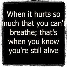 Best Greys Anatomy Quotes Simple Quote Of Grey's Anatomy QuoteSaga
