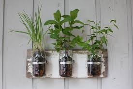 Hanging Herb Garden Kitchen Apartment Garden Hanging To Make A Home Inspiration Ideas For