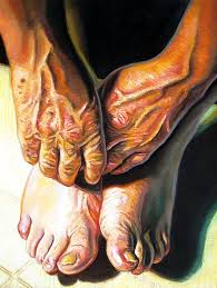 study of hands and feet i painting by cameron hampton psa