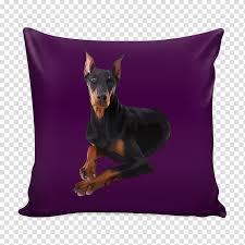 Manchester Terrier Size Chart Dobermann Manchester Terrier Dog Breed Miniature Pinscher