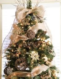 Beautiful christmas trees