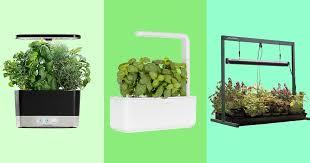 19 best indoor garden kits 2021 the
