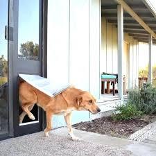 endura flap dog door panel doggy door flap pet door endura flap dog door uk