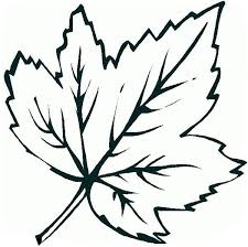 Small Picture Coloring Pages Fall Leaves Coloring Pages