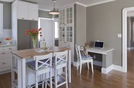 Gray Kitchen Walls Ideas  painting in gray .