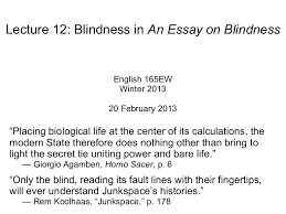 essay on blindness lecture 12 blindness in an essay on blindness