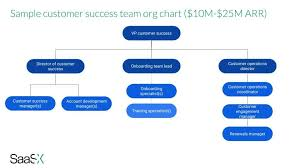 Saas Org Chart A Saas Customer Success Team Org Chart Example Saasx