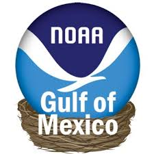 Gulf Tide Chart Amazon Com Tides Gulf Of Mexico Edition By Noaa Appstore
