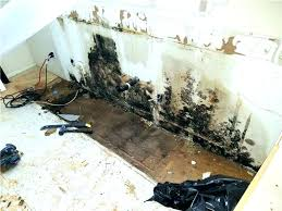 astounding how to get rid of black mold on bathroom walls bathroom tile grout kill shower