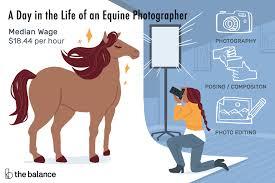 Equine Photographer Job Description Salary More