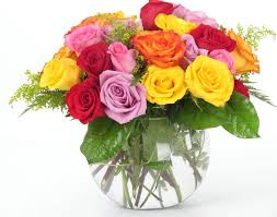what the diffe colors of roses mean