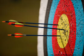 Classification <b>Accuracy</b> is Not Enough: More <b>Performance</b> Measures ...