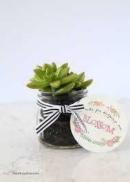DIY Succulent Gift Idea  I Heart Nap TimeChristmas Gift Plants