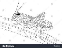Monochrome Grasshopper Coloring Page Black Over Stock Vector ...