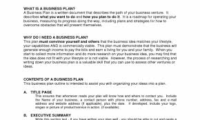 Business Plan Document Template Business Plan Clothing Retail Store Pdf Online Template Free Sample