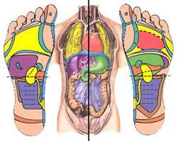Health Reflexology Nerve Ending In The Feet Mirror All