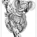 Nuova 20 Animali Da Disegnare Difficili Aestelzer Photography