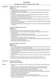 Digital Marketing Consultant Resume Resume For Study