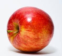 writing an essay for uni thefiveminuteguide com au writing an essay apple for brain food