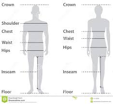 Womens Body Chart Parts Body Schemes Collection