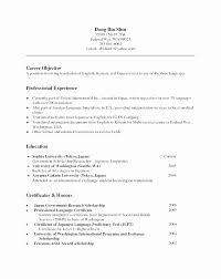20 Non Chronological Resume