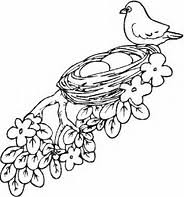 Small Picture HD wallpapers bird nest coloring pages for kids edpikikinfo