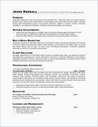 Sample Summary Statement Resume Sample Resume Summary New Resume Summary Example Resume Professional