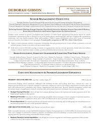 non profit executive resume .