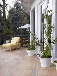WisteriaRHS GardeningWall Climbing Plants In Pots
