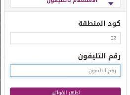 billing.te.eg.. استعلم عن فاتورة التليفون الارضي يوليو 2021 من موقع المصرية  للاتصالات وطرق الدفع - كورة في العارضة