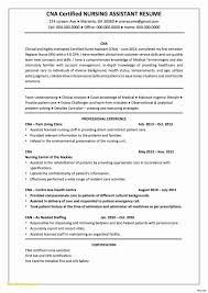 Executive Cover Letter Template Word Examples 2019 Executive Resume