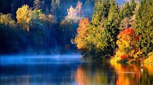 river very stiil withgold and green trees reflecting in dark blue water