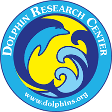 Dolphin Research Center - Dolphin Research Center