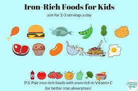Best Iron Rich Foods For Babies Toddlers Big Kids With