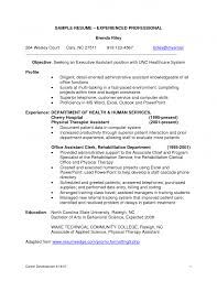 Technology Professional Resume Example Sample Technology