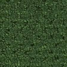 12 ft w x cut to length forest green berber loop interior