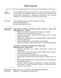 Resume Objective For It Professional Goal Statement Project