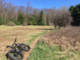 Meadow Mowing at the Landlocked Forest | Burlington, MA Patch