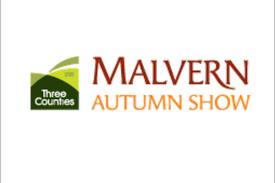 Malvern Autumn Show   National Vegetable Society