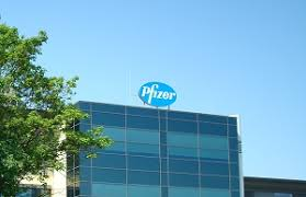 pfizer freiburg jobs