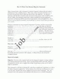 Resume Profile Sample Statements Sidemcicek Com